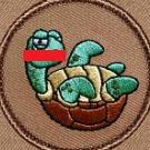 Tampa Turtle