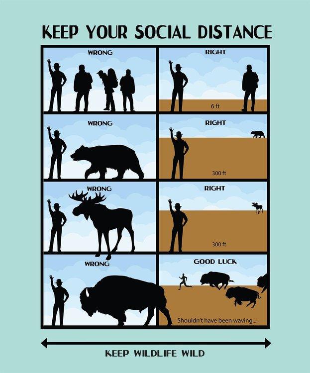 Coronavirus National Park Service social distancing.jpg