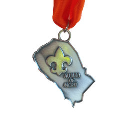 District-Award-of-Merit-Medal.png